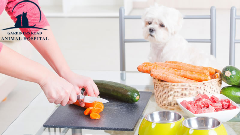 Homegrown canines have figured out how to endure an eating regimen that incorporates starch